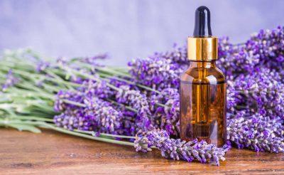 Lavandula angustifolia (Lavender) Essential Oil