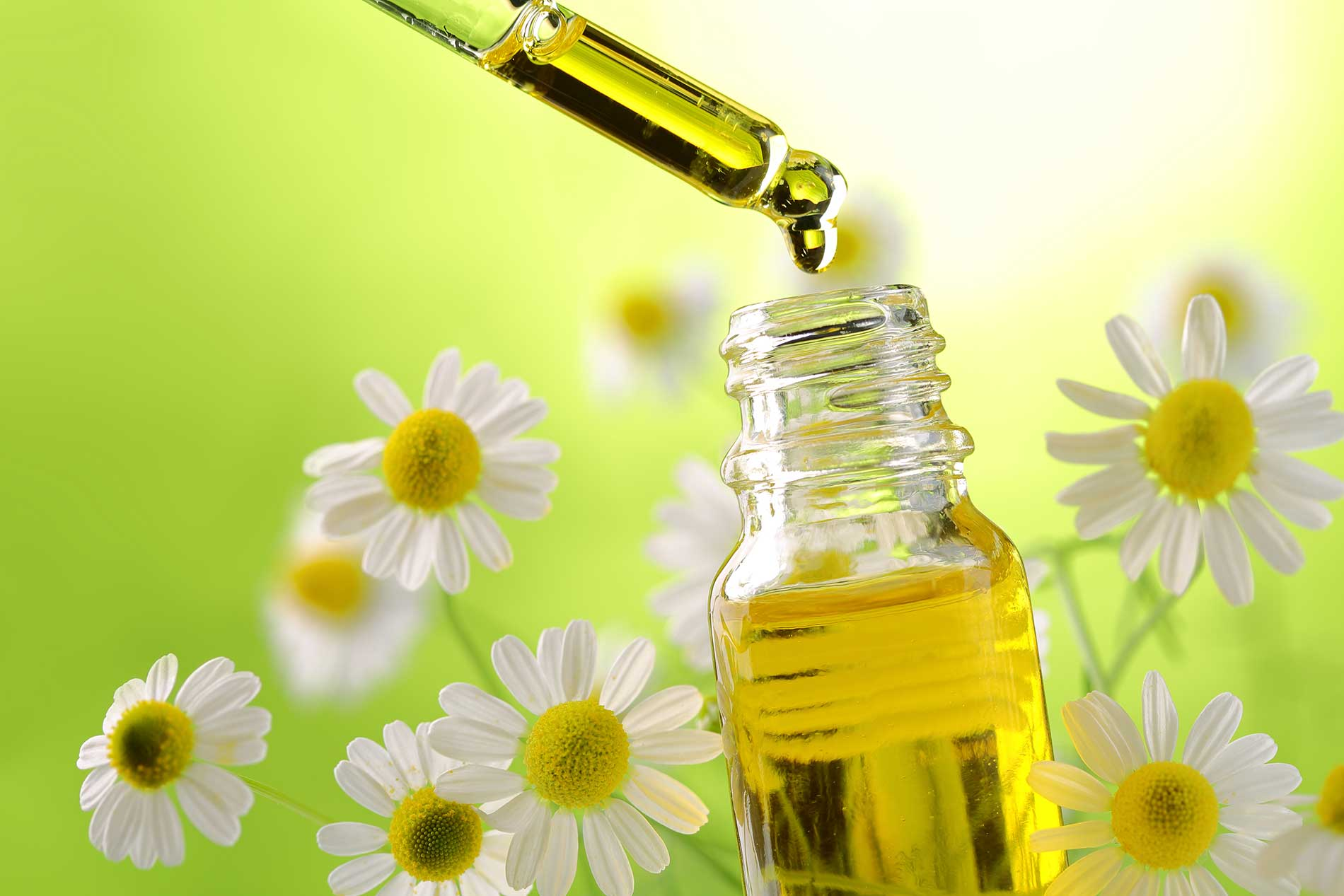 Essential Oil and Daisy
